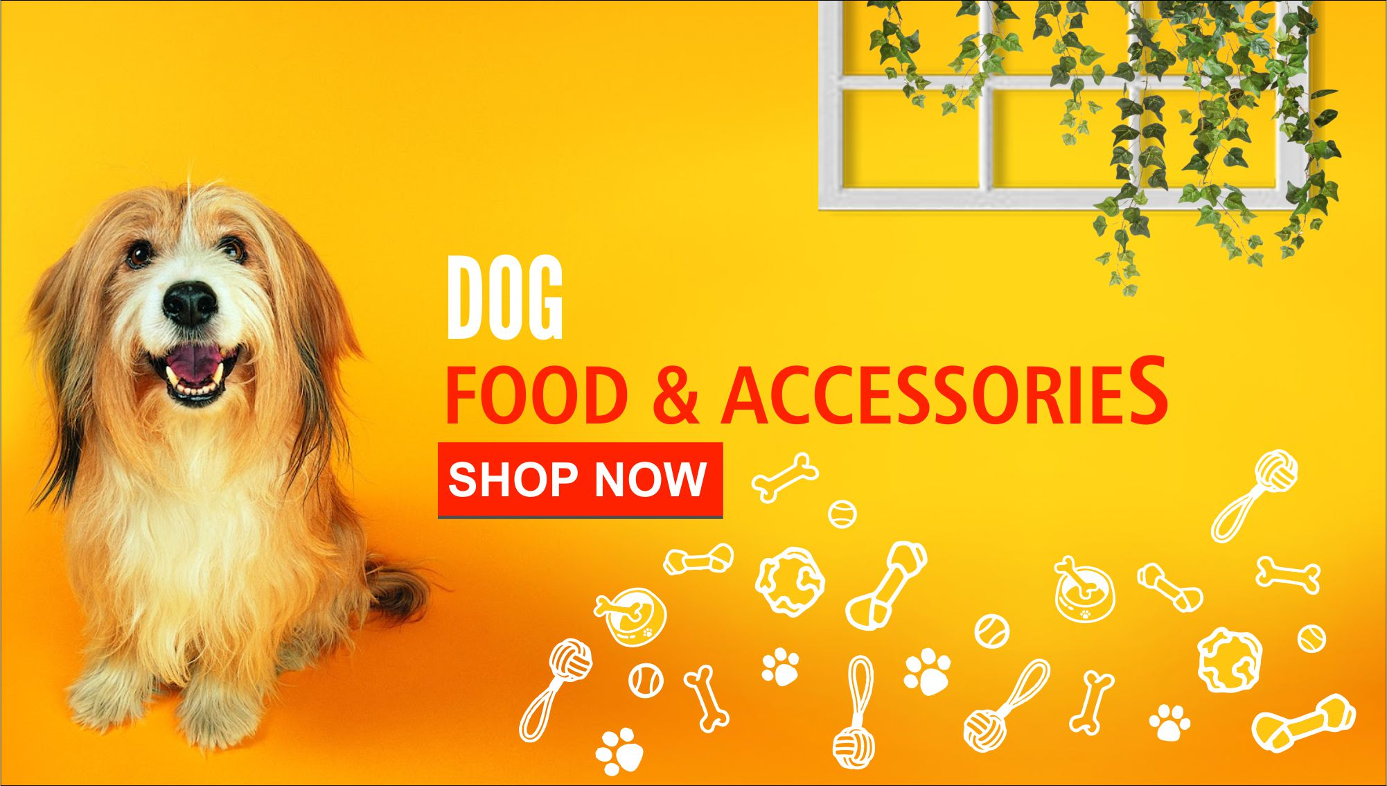 Dog food and accessories